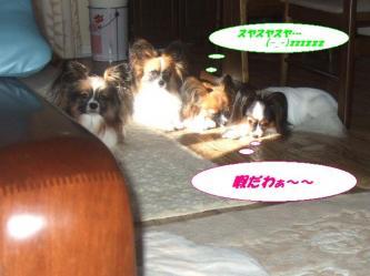 04-01_20091004185511.jpg