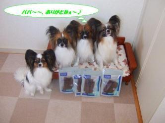 04-07_20091004185612.jpg