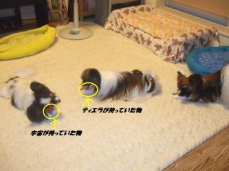06-05_20091006202349.jpg