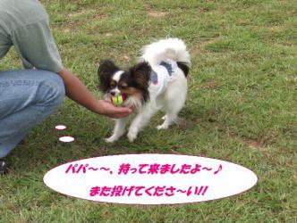 08-12_20090913205112.jpg