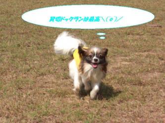 16-10_20091023000855.jpg