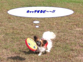 16-12_20091024194941.jpg