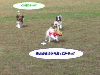 16-19_20091024195055.jpg