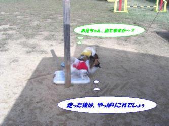 16-20_20091024195106.jpg
