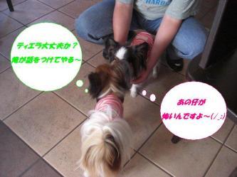 18-03_20090918204450.jpg