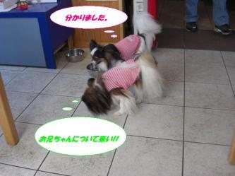 18-05_20090918204510.jpg