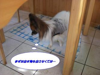 18-06_20090918204520.jpg