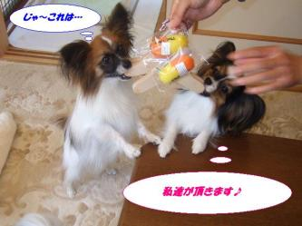 20-04_20091020182701.jpg
