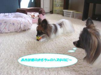 20-07_20091020182730.jpg
