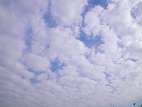 雲1203