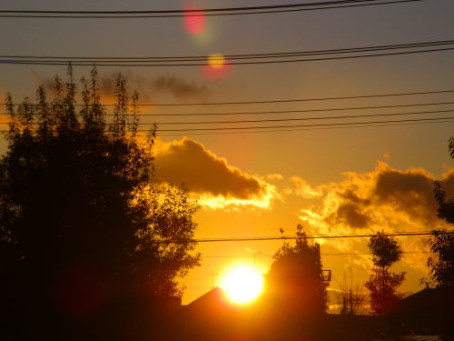 夕陽1222