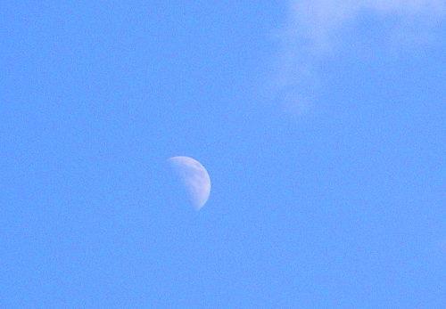 上弦の月112