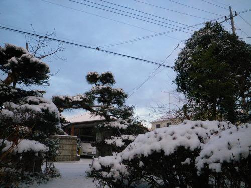 雪景色116