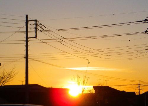 夕陽118