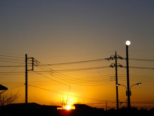 夕陽121