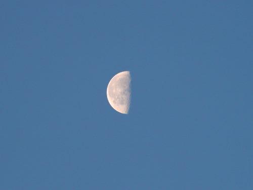 下弦の月126