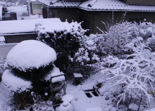 雪景色212