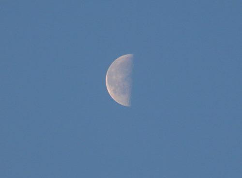 お月さま225