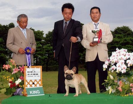 dog-show2.jpg