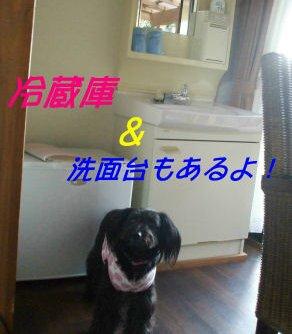 冷蔵庫&洗面台