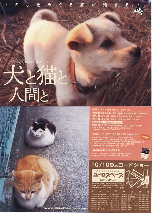 犬と猫とチラシ
