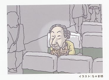 稲葉さんイラスト