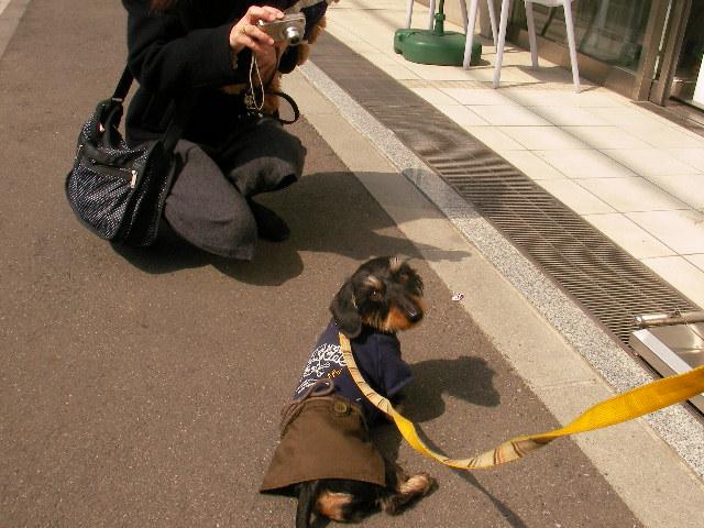 2008 3 3 杏ちゃん・メイちゃんと 135