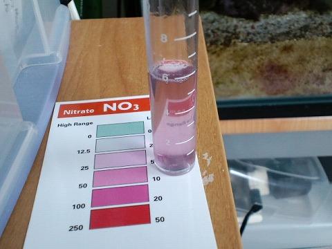 水質検査091014
