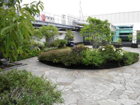 初夏の庭園49