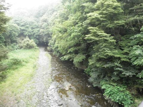 緑のくずは渓谷12