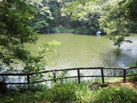 緑の湖畔92