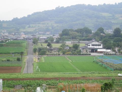 田原盆地39