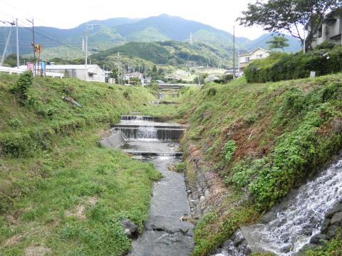 夏の葛葉川27