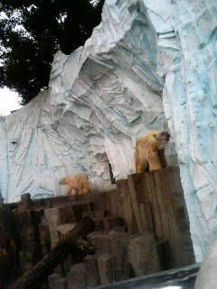 上野動物園45