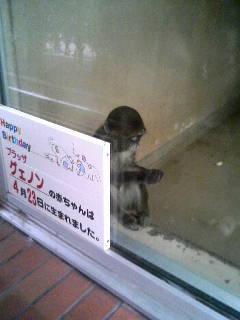 上野動物園67