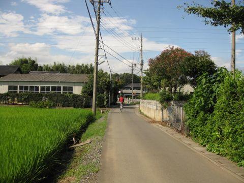 外国府間を行く旧日光街道