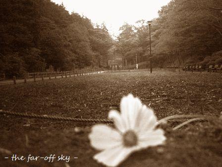 2009-09-16-01.jpg