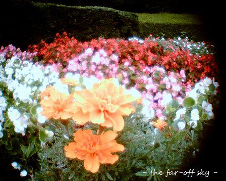 2009-09-23-03.jpg