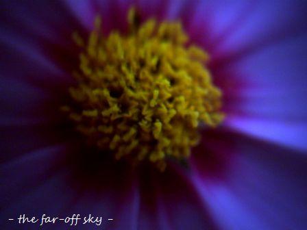 2009-10-18-02.jpg