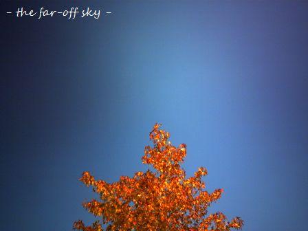 2009-10-21-01.jpg