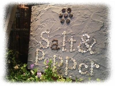 SaltPepper-1☆