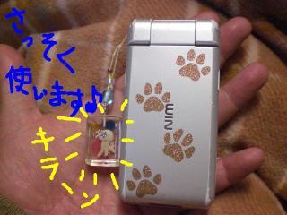 CIMG1051a.jpg