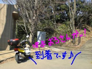 CIMG8441a.jpg