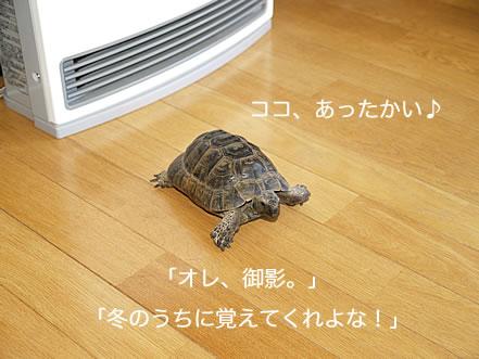 071216_ima9.jpg