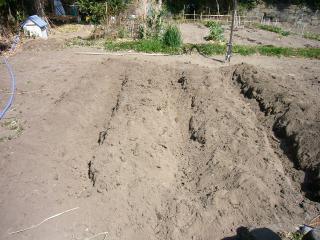 初めての畝作り