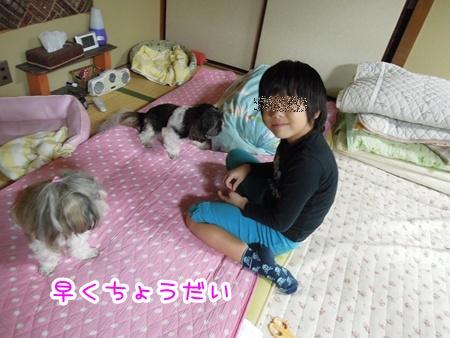 DSCN2399_20111010231957.jpg