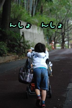 DSC_8243.jpg
