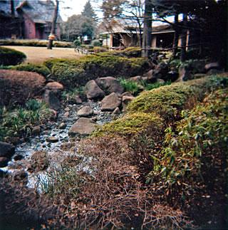 荻窪公園1