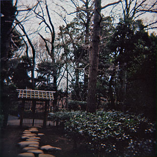 荻窪公園2