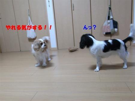 002_convert_20120217165941[1]